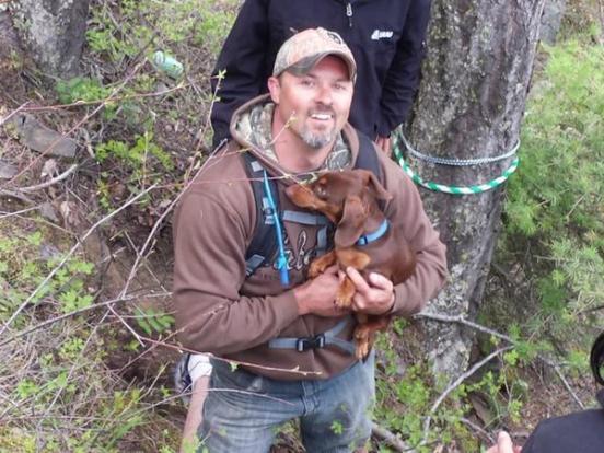 dachshund survives 6 days after atv crash