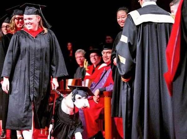 Barkley service dog and Devon MacPherson at graduation