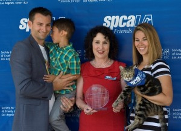 2015 spcaLA hero dog award goes to cat