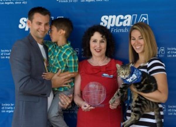 2015 spcaLA hero dog award goes to cat