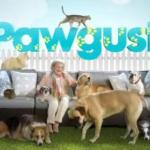 Betty White Hosts Discovery Family's Month-Long 'Pawgust'