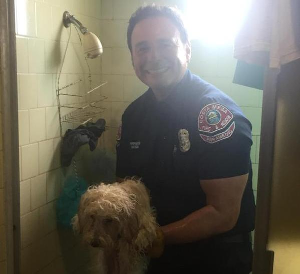 firefighter saves dog with paw stuck in bathtub drain