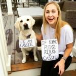 Selfie Campaign Raises Awareness of Dogs Lost on Fourth of July