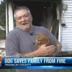 Rescued Dachshund Saves Kentucky Family from House Fire