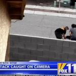 Black Lab Attacks Tucson Boy and His Pit Bull