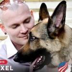 American Airlines Refuses American Hero Service Dog Award Winner