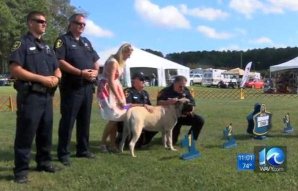Virginia deputy saves dog from burning car