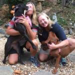 Rescued 'Hugging' Shelter Dogs Finally in Forever Home Together