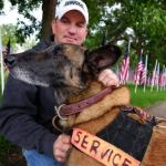 Retired Hero Military Dog 'Major Mike' Shot Dead by Bicyclist