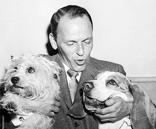frank sinatra and two dogs