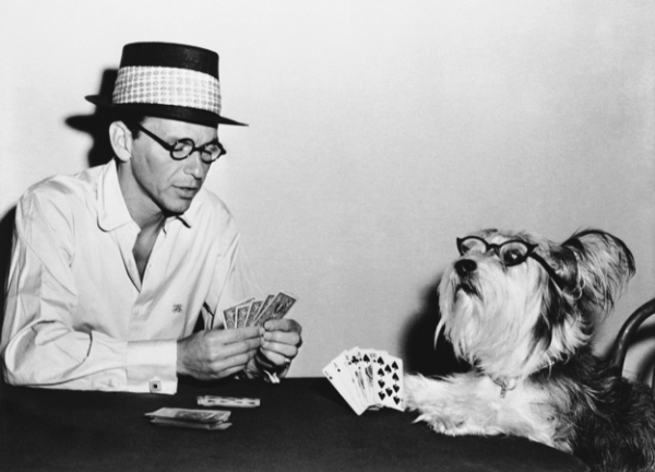frank sinatra playing cards with dog