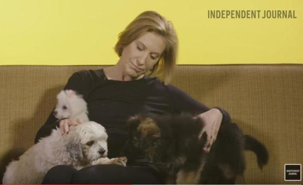 Why Cats are Better than Dogs Carly Fiorina