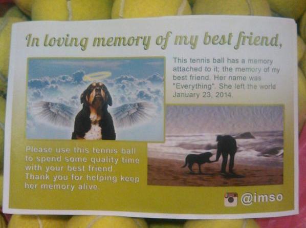 man gives away tennis balls in memory of dog