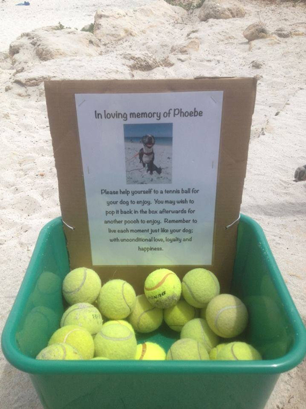tennis balls left at beach in memory of dog
