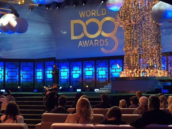 World Dog Awards