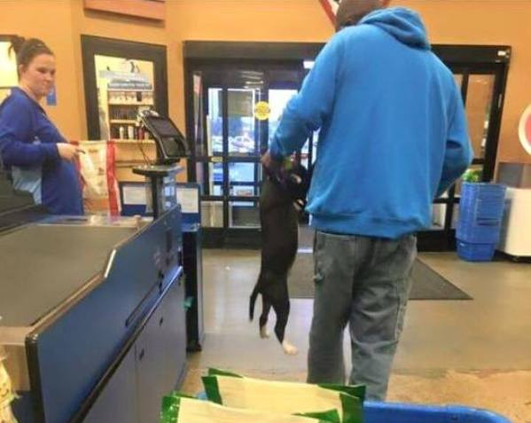 man carries puppy by collar in PetSmart