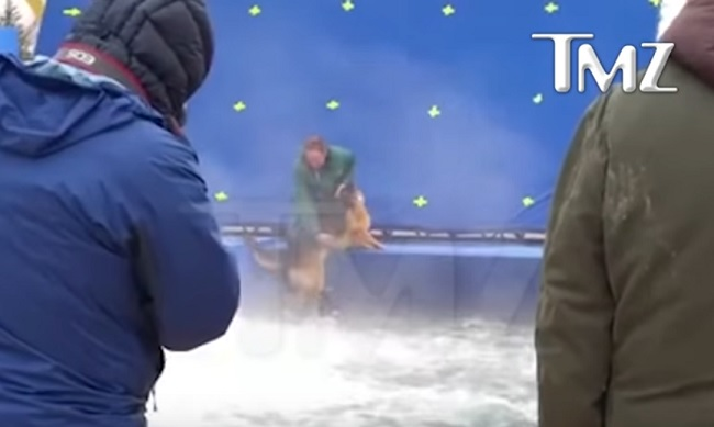 """German Shepherd forced into pool for """"A Dog's Purpose"""""""