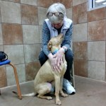 Heartwarming: Washington Woman Adopts Dog Who Shares Her Medical Condition