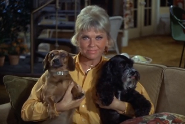 Doris Day and dogs