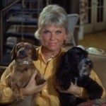How to Honor the Legacy of the Amazing Doris Day