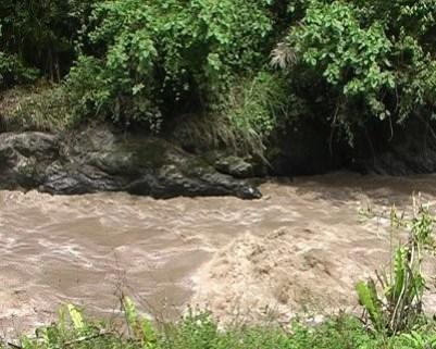 Половодье на реке в Эквадоре. Вода коричневая, потому что быстрый поток переносит множество осадка