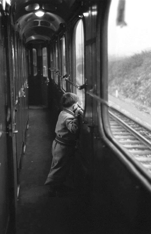 paidi-treno