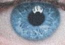 Όλοι οι άνθρωποι με μπλε μάτια έχουν έναν αποκλειστικό κοινό πρόγονο