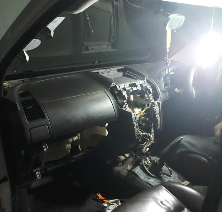 rat in car 01
