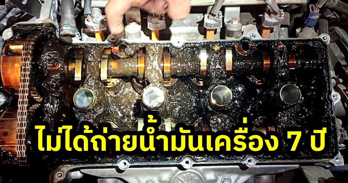 suzuki oil 7