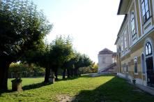 Amadé-Bajzáth-Pappenheim kastély (6)