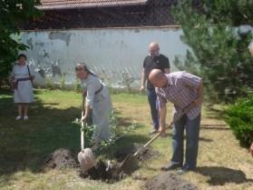2016 júliusa, ajándék almafa ültetése a köpui delegáció segítségével