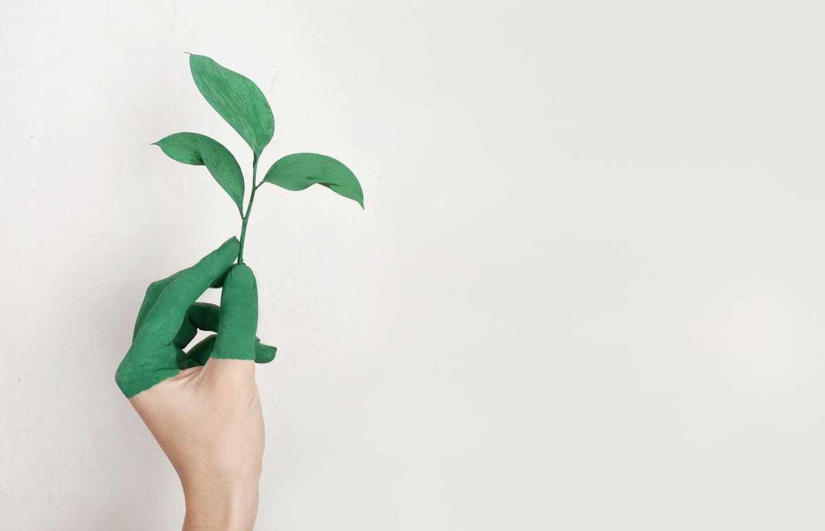 Delaktiga medarbetare gör investeringar i ny teknik hållbara 1