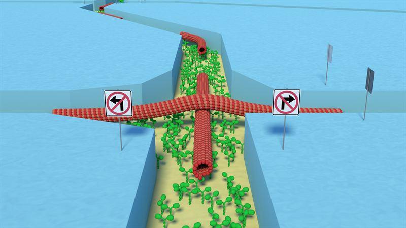Skapar parallelldatorer med nanoteknikens hjälp