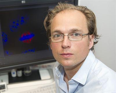 Receptordynamik öppnar nya möjligheter för läkemedelsutveckling