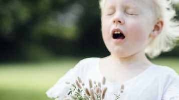Pollensäsongen närmar sig – så kan smarta hem-produkter minska lidandet för pollenallergiker 1