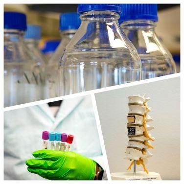 36 MSEK — årets anslag från IngaBritt och Arne Lundbergs Forskningsstiftelse till forskning inom cancer, njursjukdomar och ortopedi 2
