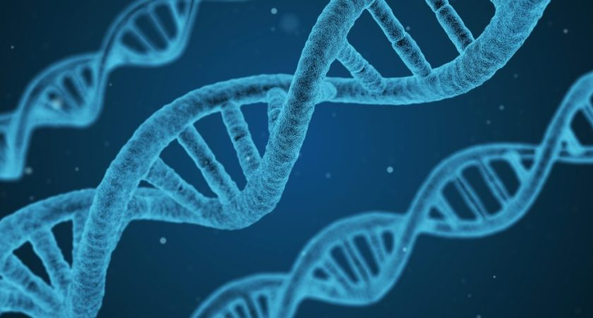 Prostatype Genomics förstärker erbjudandet för Prostatype ® genom lansering av P-score Web Service (PWS)