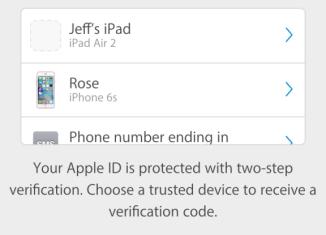 2-Step-Auth-Apple-ID-576×1024[1]