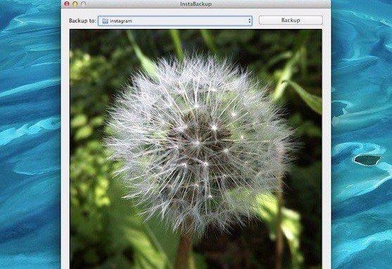 Как скачать все фотографии из инстаграма