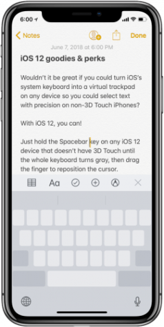 iOS-12-keyboard-trackpad-mode-on-non-3d-touch-iphone-251×500