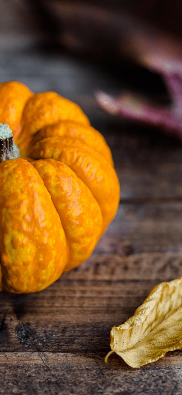 pumpkin-fall-autumn-iphone-xs-max-wallpaper-cayla-768×1662