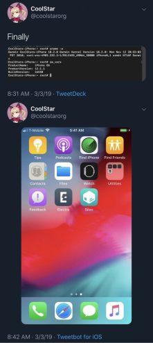 CoolStar-iOS-12-Electra-1-768×1717