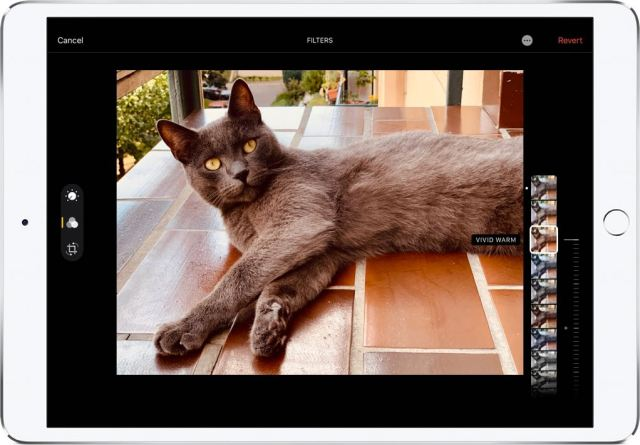 iOS-13-Photos-Vivid-Warm-filter-slider-001