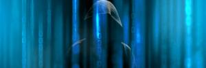 En cybersikkerhedsstrategi med huller 2