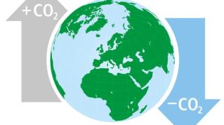 Klimakompensering – en måde at købe sig fri? 1