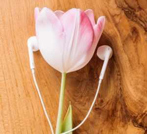 Digitale møder gør os bedre til at lytte 1