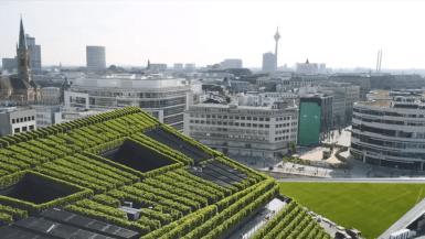 Europas grønneste facade ligger i Düsseldorf 1