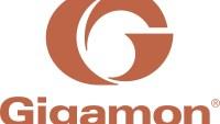 Fem skäl till att du inte behöver en ny budget för att köpa Gigamon