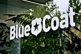 Med förvärvet av molnsäkerhetsföretaget Elastica levererar Blue Coat branschens första kompletta molnsäkerhetslösning