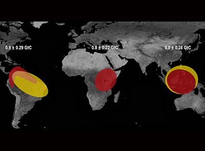 How El Nino raised CO2